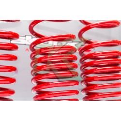 Honda Civic 96-00 / Espirales Progresivos Skunk2