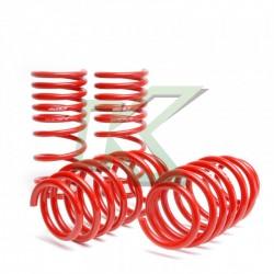 Honda Civic 06-11 / Espirales Progresivos Skunk2