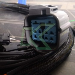 Ramal De Motor Wireworx - Honda Serie B - Obd1
