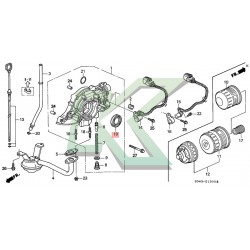 Reten bomba de aceite original HONDA (31x46x7) / Serie D